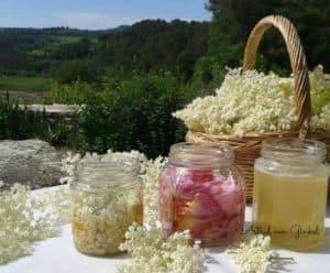 fitomon mels aromt